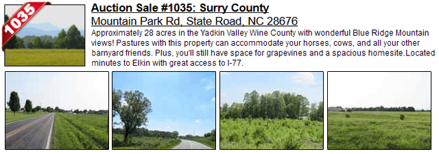 Auction Sale #1035: Surry County - Mountain Park Rd, State Road, NC 28676